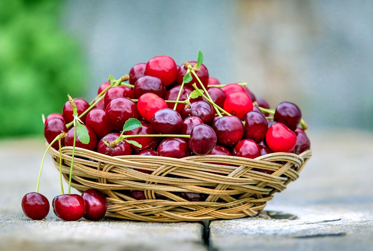 The Git Cherry Pick Command