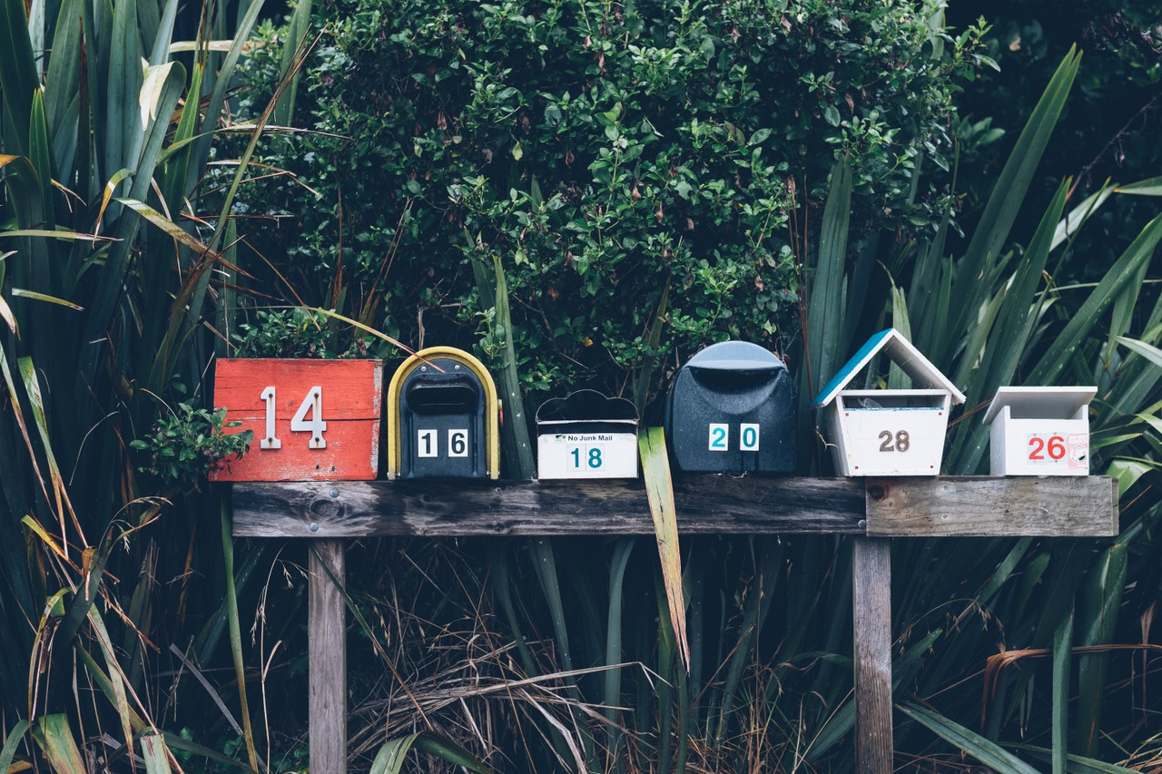 How to Send an Email Newsletter with the SendGrid API