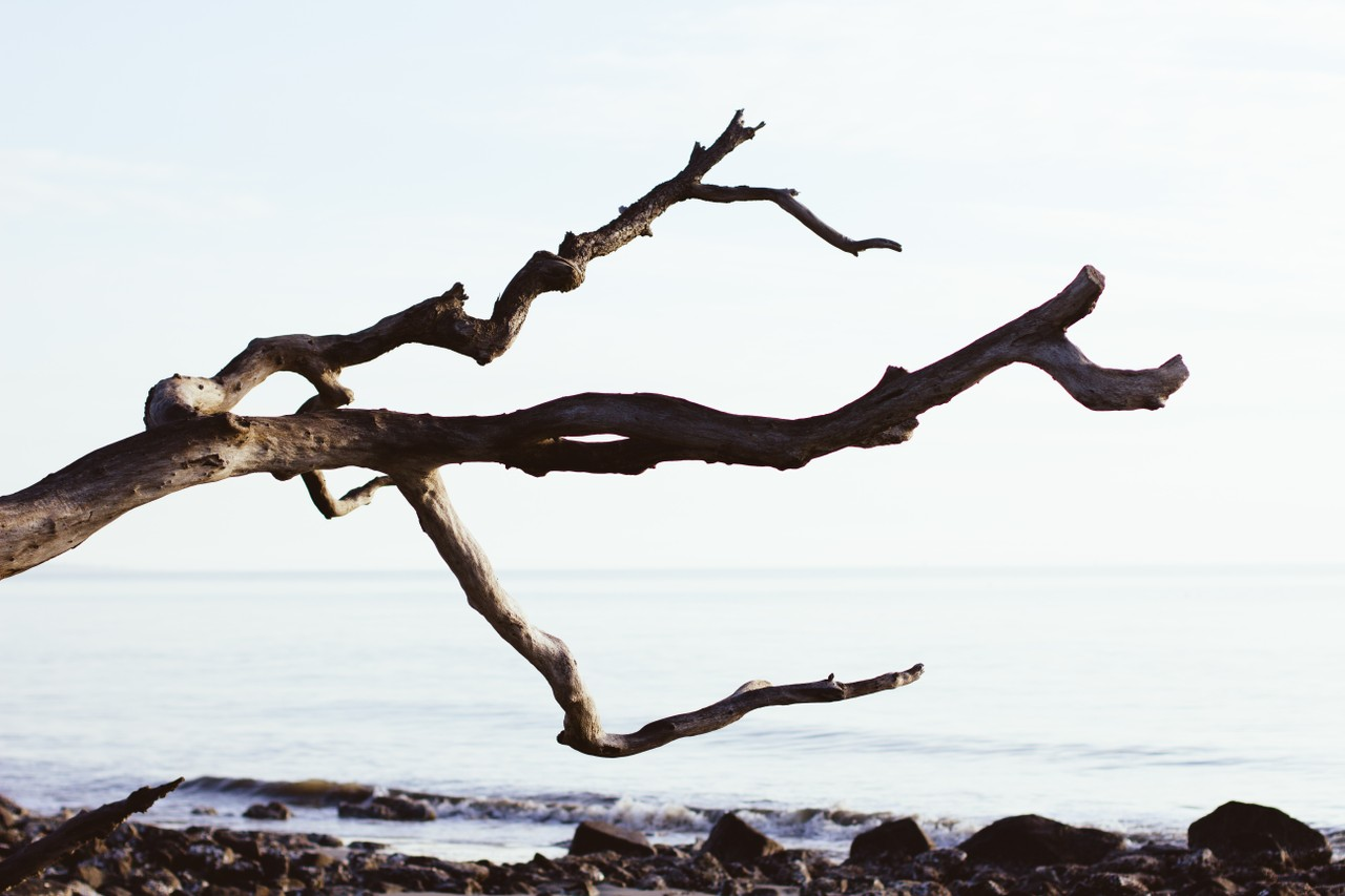 Git Switch Branch – How to Change the Branch in Git